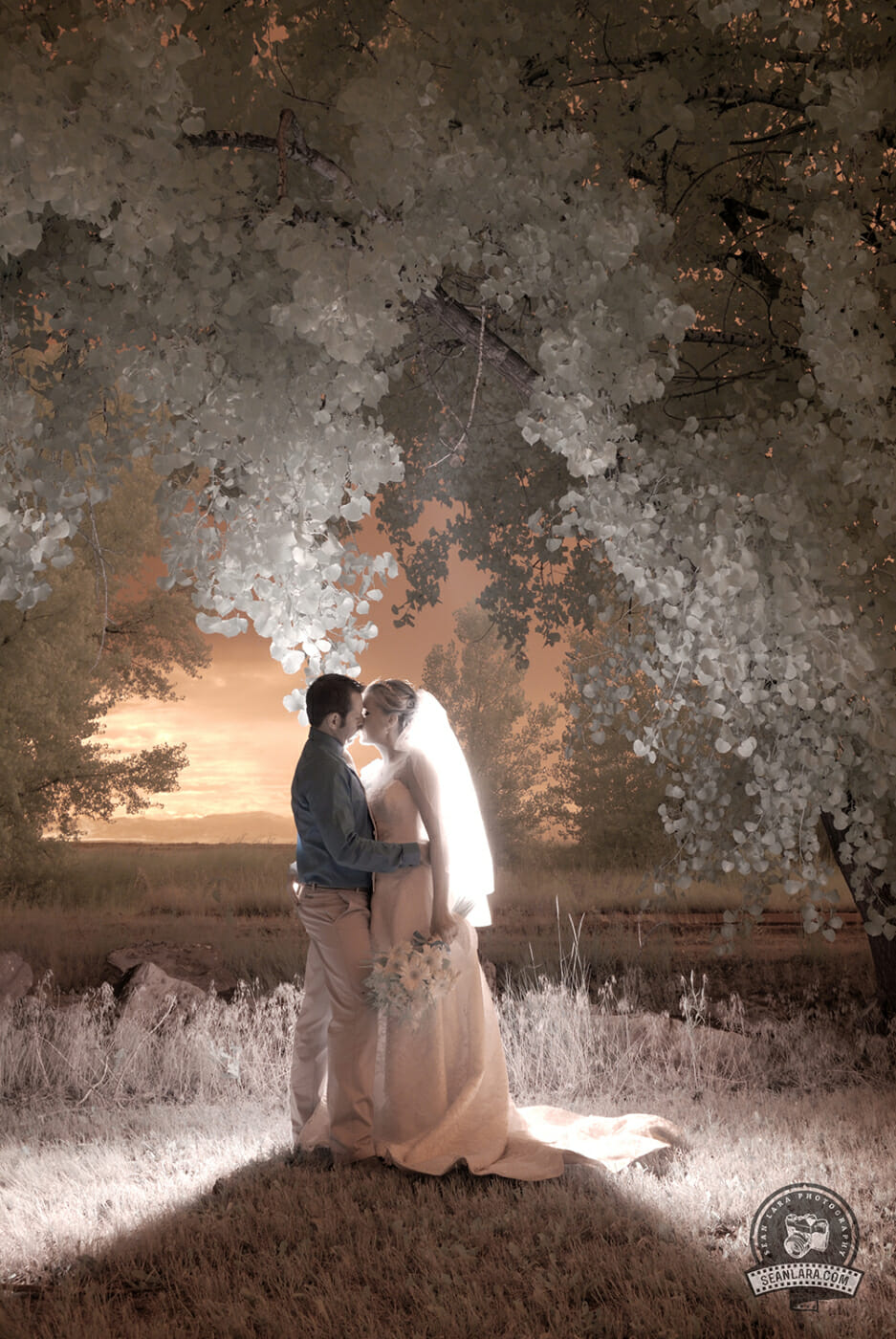 infrared wedding